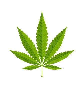 Haben Sie Fragen zum Thema Drogen im Straßenverkehr? Rufen Sie uns an: <strong> 0221 301 403 44 </strong>